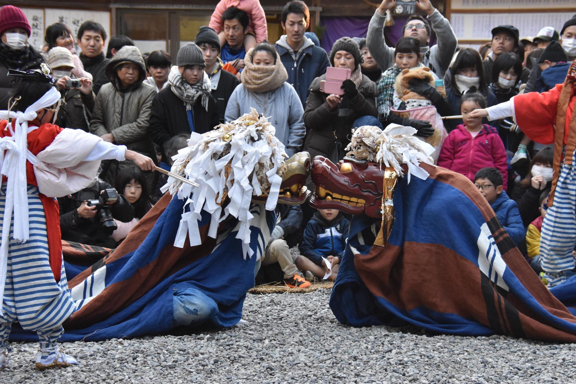 宇賀多神社獅子舞奉納-井上悟さん撮影